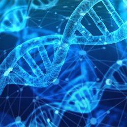 Geneesmiddelen voor geavanceerde therapieën vragen om gespecialiseerde logistiek